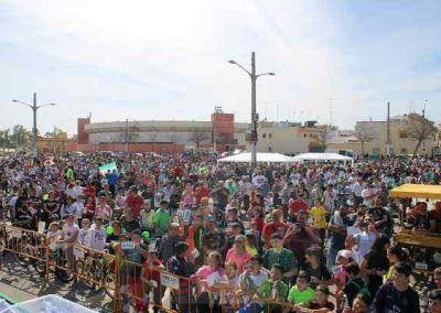 Organización de eventos relacionados con el Día de Andalucía